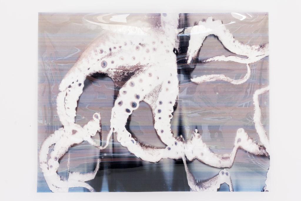 Oktopentapus 1