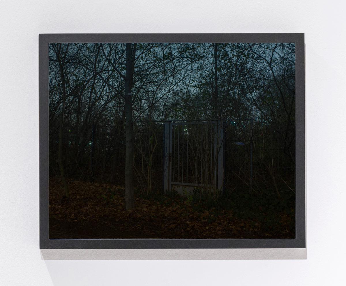 N.Lichtig(sheismyhero)framed