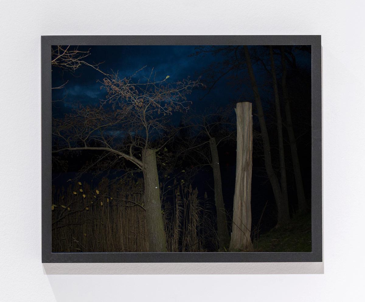 N.Lichtig(thatismysquare)framed