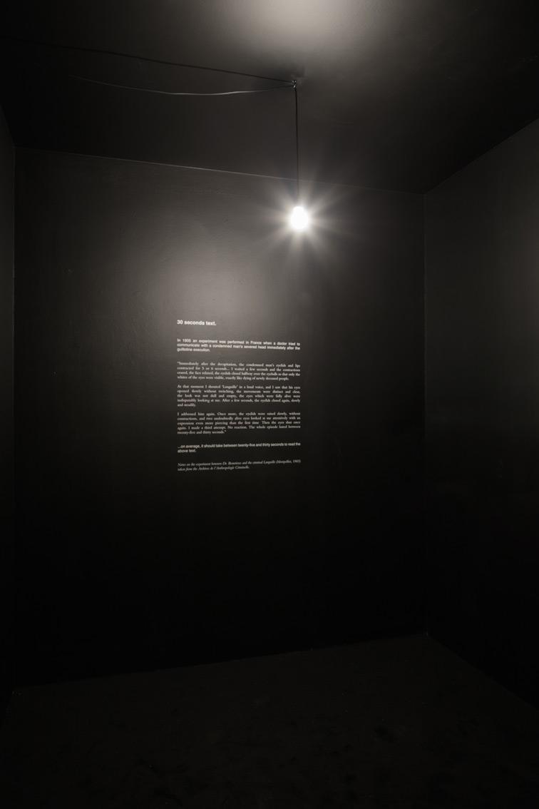 Douglas Gordon, 30 sec text, 1996